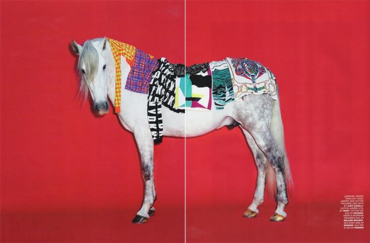 horsing5+6