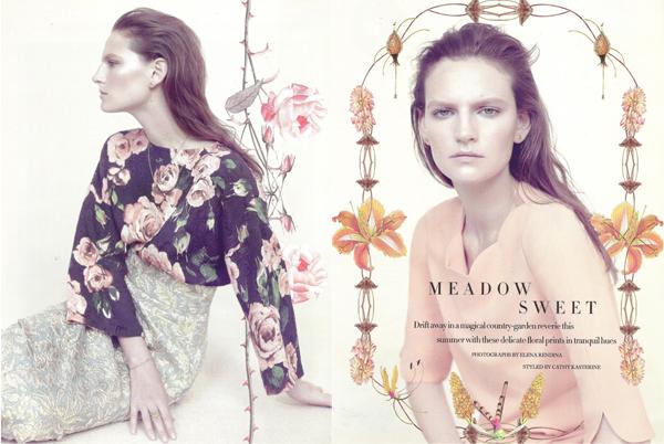 Meadow sweet por Elena Rendina